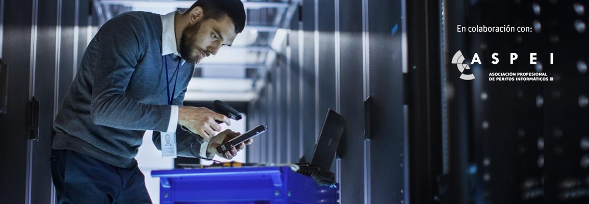 Perito informático analizando unos servidores